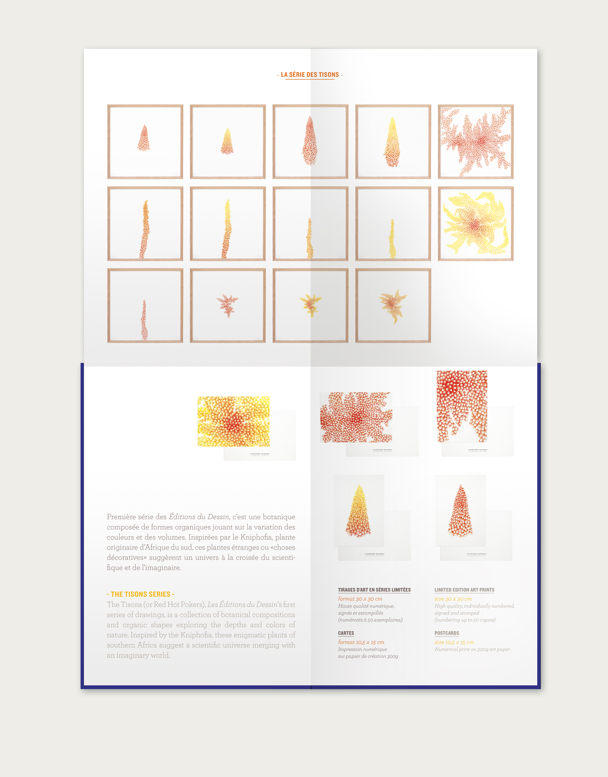 Les éditions du dessin, brochure design & DA by Tomoe Sugiura, 2013